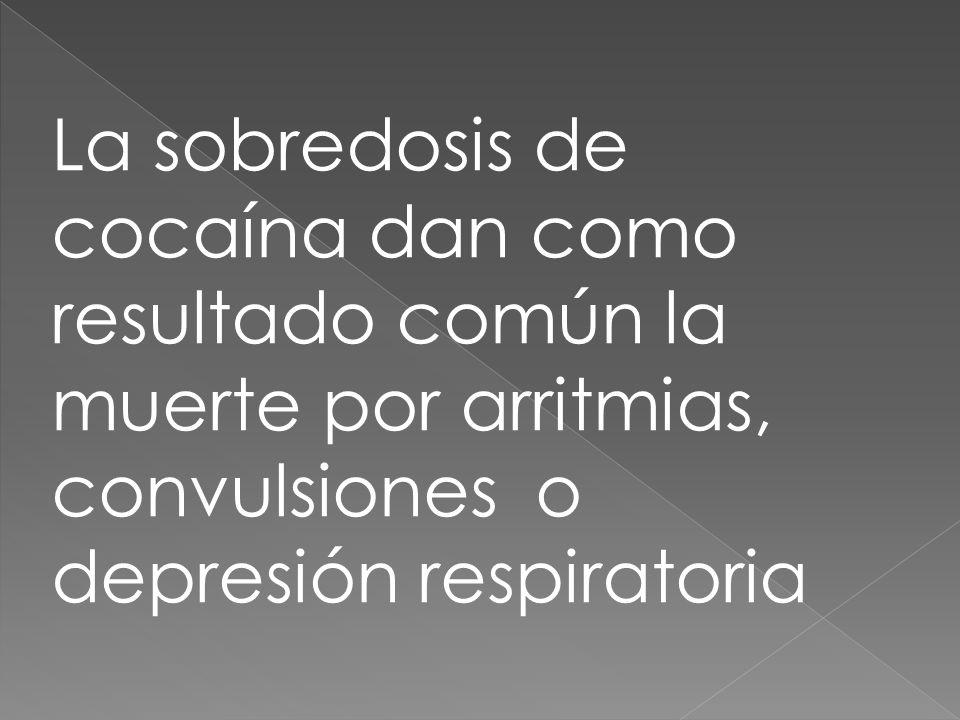 La sobredosis de cocaína dan como resultado común la muerte por arritmias, convulsiones o depresión respiratoria