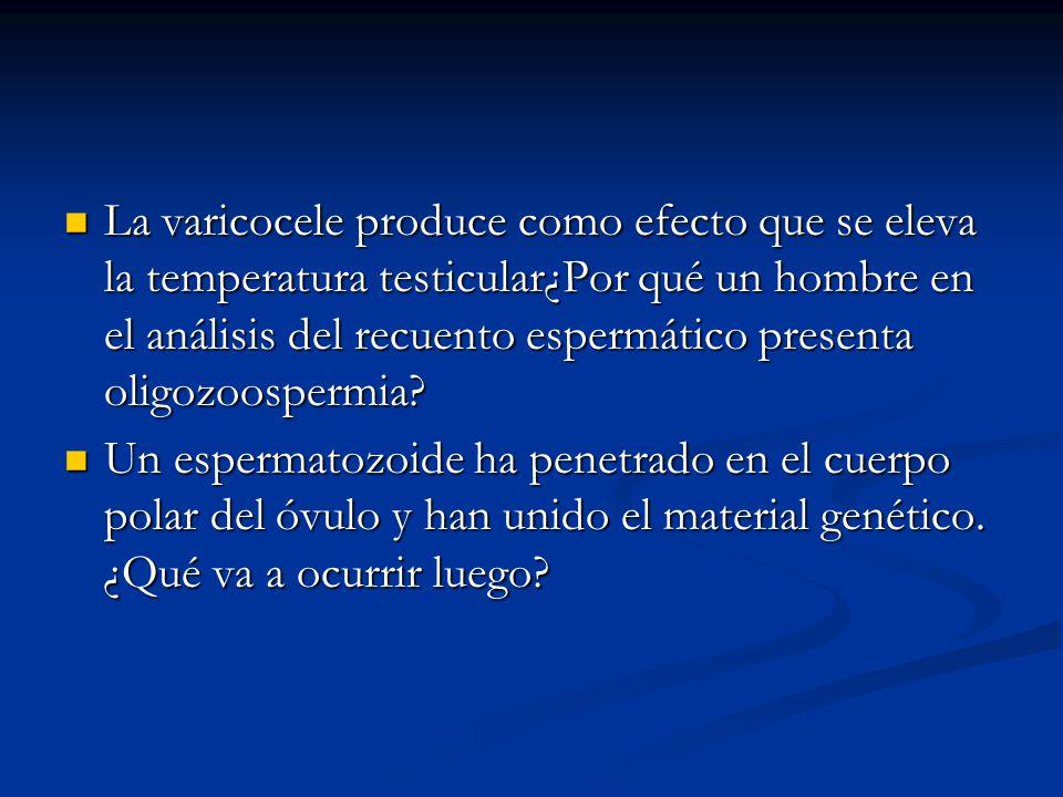 La varicocele produce como efecto que se eleva la temperatura testicular¿Por qué un hombre en el análisis del recuento espermático presenta oligozoospermia.