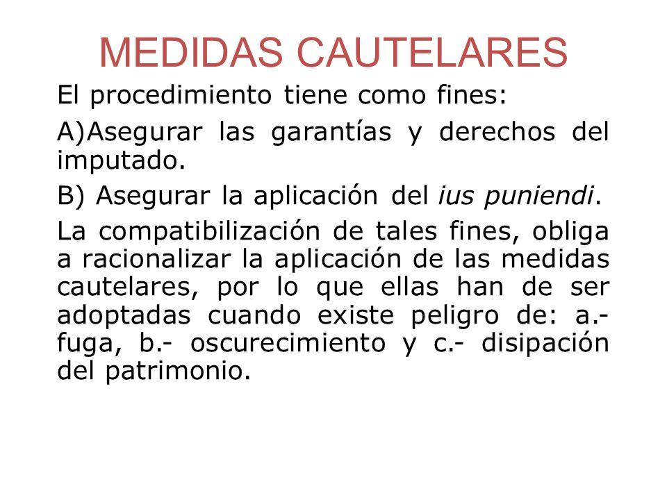 MEDIDAS CAUTELARES El procedimiento tiene como fines: A)Asegurar las garantías y derechos del imputado.