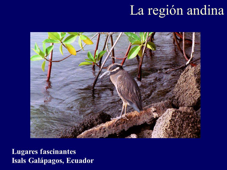 La región andina Lugares fascinantes Isals Galápagos, Ecuador