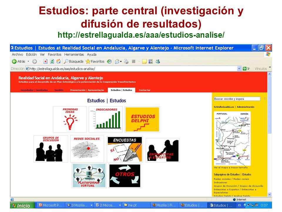 Estudios: parte central (investigación y difusión de resultados) http://estrellagualda.es/aaa/estudios-analise/