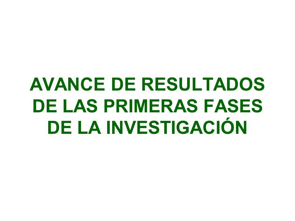 AVANCE DE RESULTADOS DE LAS PRIMERAS FASES DE LA INVESTIGACIÓN
