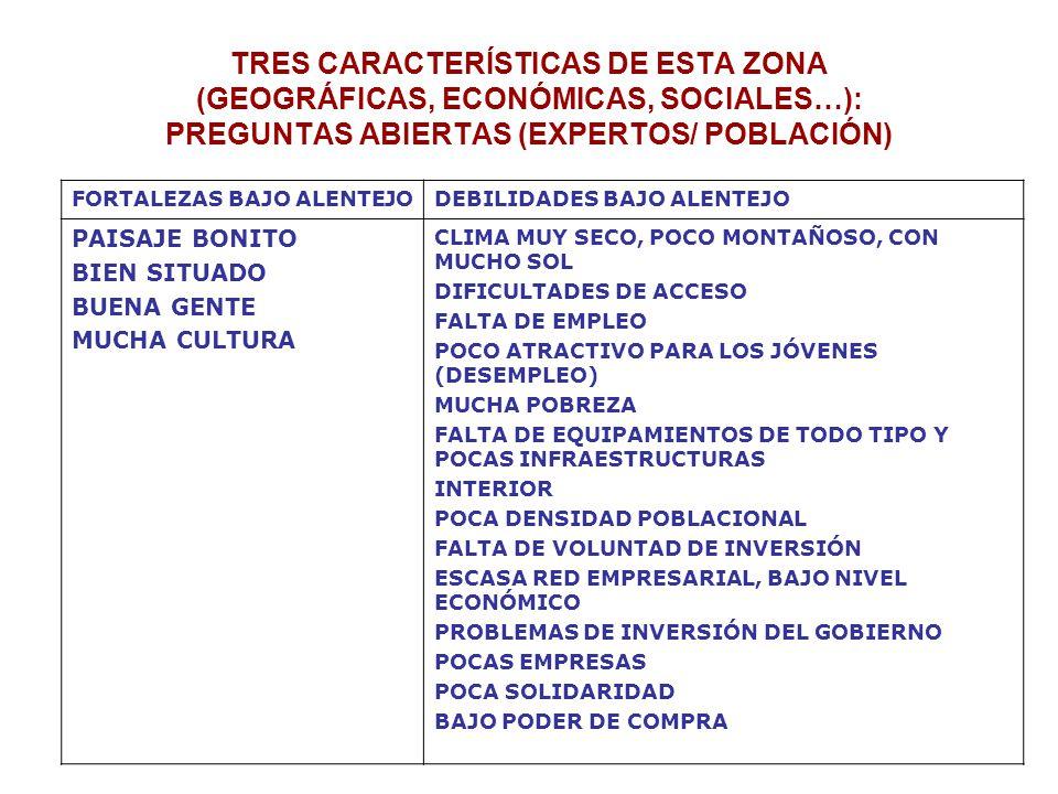 TRES CARACTERÍSTICAS DE ESTA ZONA (GEOGRÁFICAS, ECONÓMICAS, SOCIALES…): PREGUNTAS ABIERTAS (EXPERTOS/ POBLACIÓN) FORTALEZAS BAJO ALENTEJODEBILIDADES BAJO ALENTEJO PAISAJE BONITO BIEN SITUADO BUENA GENTE MUCHA CULTURA CLIMA MUY SECO, POCO MONTAÑOSO, CON MUCHO SOL DIFICULTADES DE ACCESO FALTA DE EMPLEO POCO ATRACTIVO PARA LOS JÓVENES (DESEMPLEO) MUCHA POBREZA FALTA DE EQUIPAMIENTOS DE TODO TIPO Y POCAS INFRAESTRUCTURAS INTERIOR POCA DENSIDAD POBLACIONAL FALTA DE VOLUNTAD DE INVERSIÓN ESCASA RED EMPRESARIAL, BAJO NIVEL ECONÓMICO PROBLEMAS DE INVERSIÓN DEL GOBIERNO POCAS EMPRESAS POCA SOLIDARIDAD BAJO PODER DE COMPRA