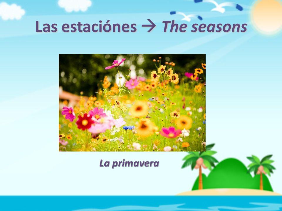 Las estaciónes  The seasons La primavera
