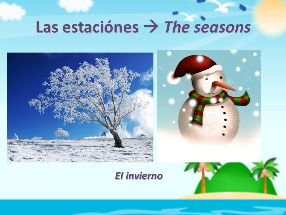 Las estaciónes  The seasons El invierno