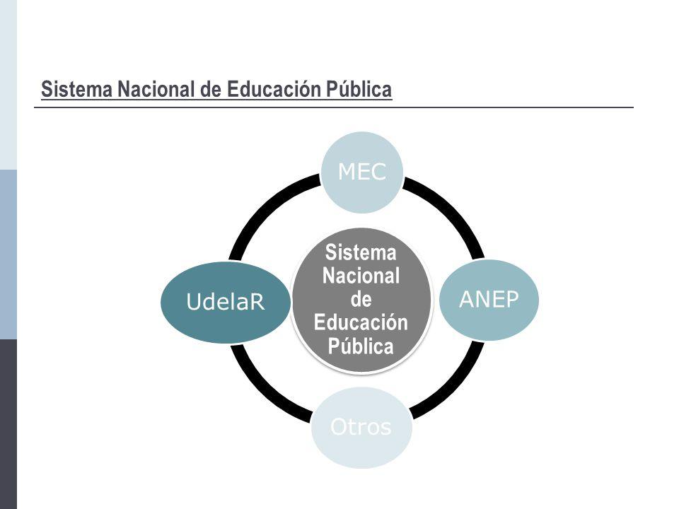 Sistema Nacional de Educación Pública MECANEPOtrosUdelaR