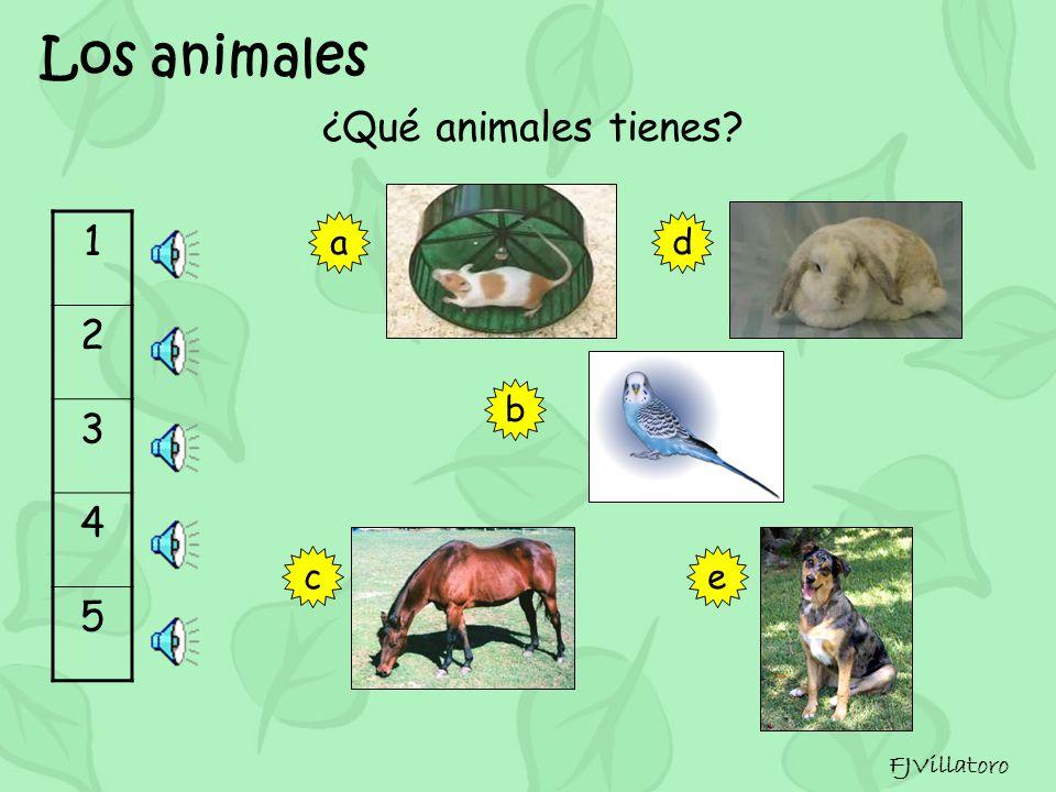 Los animales ¿Qué animales tienes FJVillatoro 123456789101112131415 Un perro
