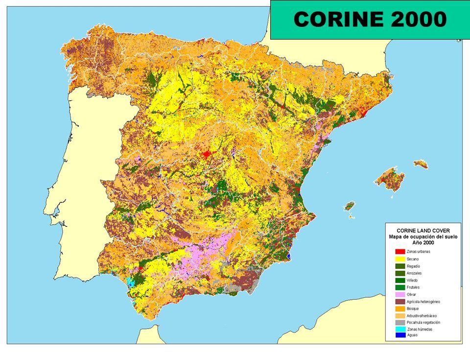 CORINE 2000
