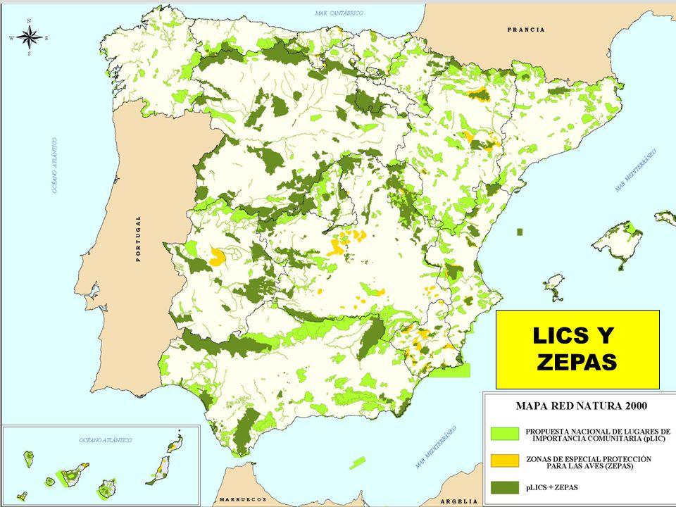 LICS Y ZEPAS