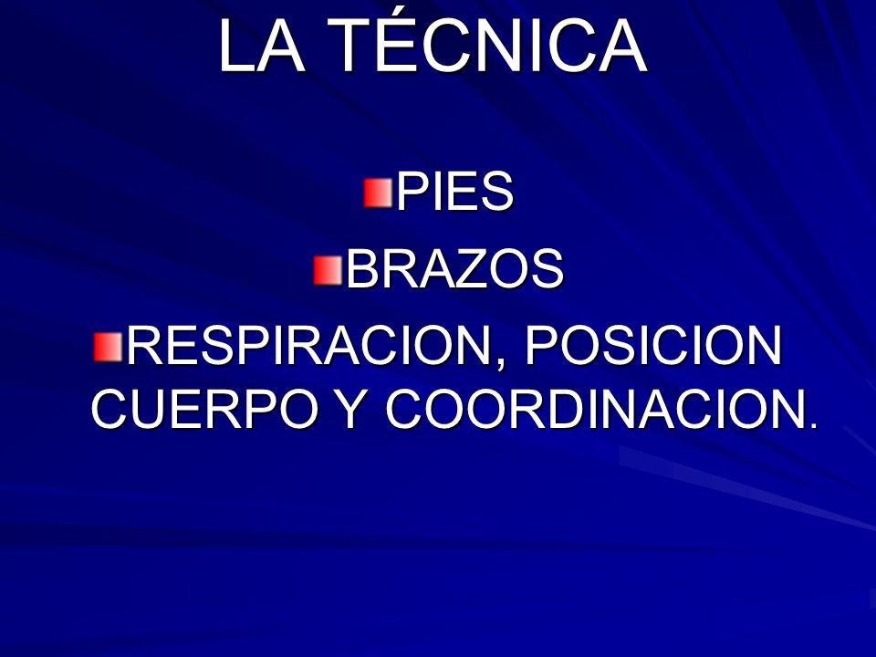 LA TÉCNICA PIESBRAZOS RESPIRACION, POSICION CUERPO Y COORDINACION.