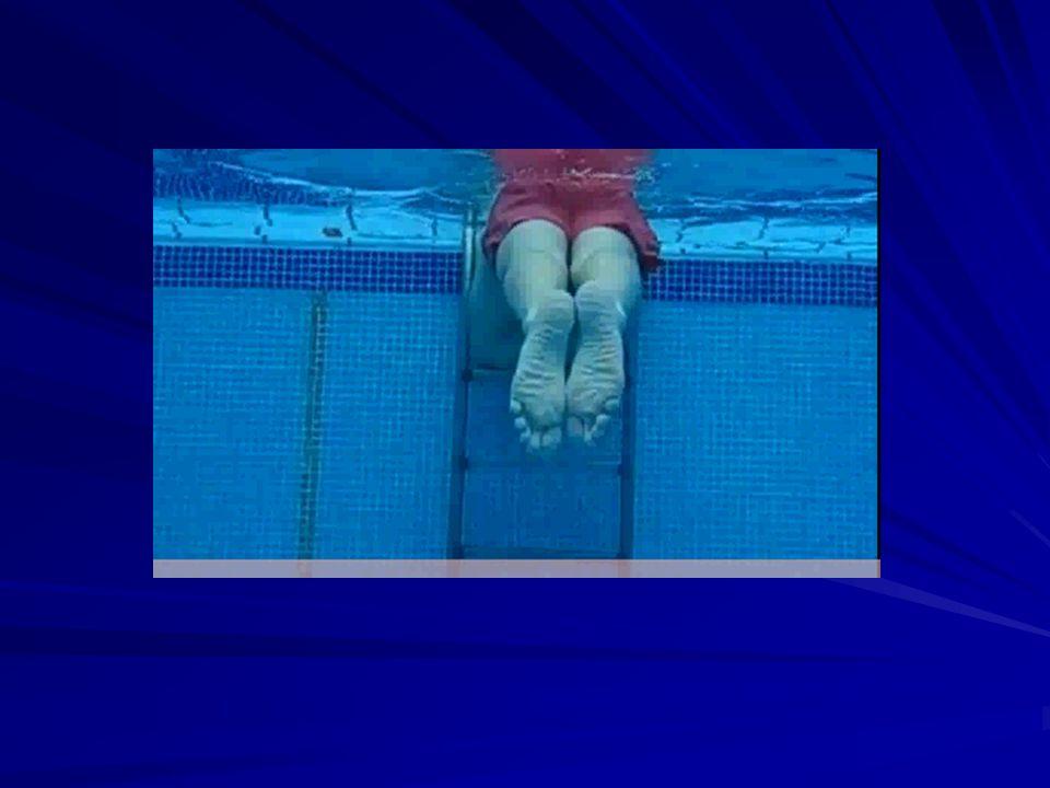 ACCIÓN DE BRAZOS La tracción de la braza es en realidad una acción de hélice donde las manos empujan el agua hacia afuera, luego adentro y atrás para comenzar de nuevo por una acción con los brazos extendidos.
