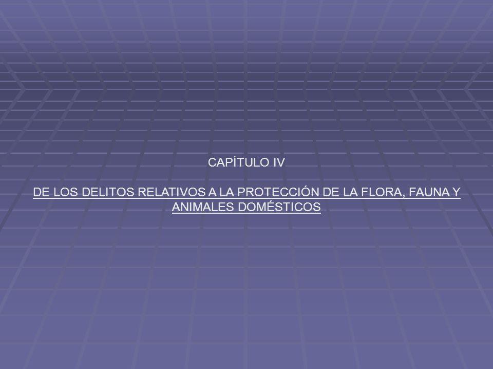 CAPÍTULO IV DE LOS DELITOS RELATIVOS A LA PROTECCIÓN DE LA FLORA, FAUNA Y ANIMALES DOMÉSTICOS