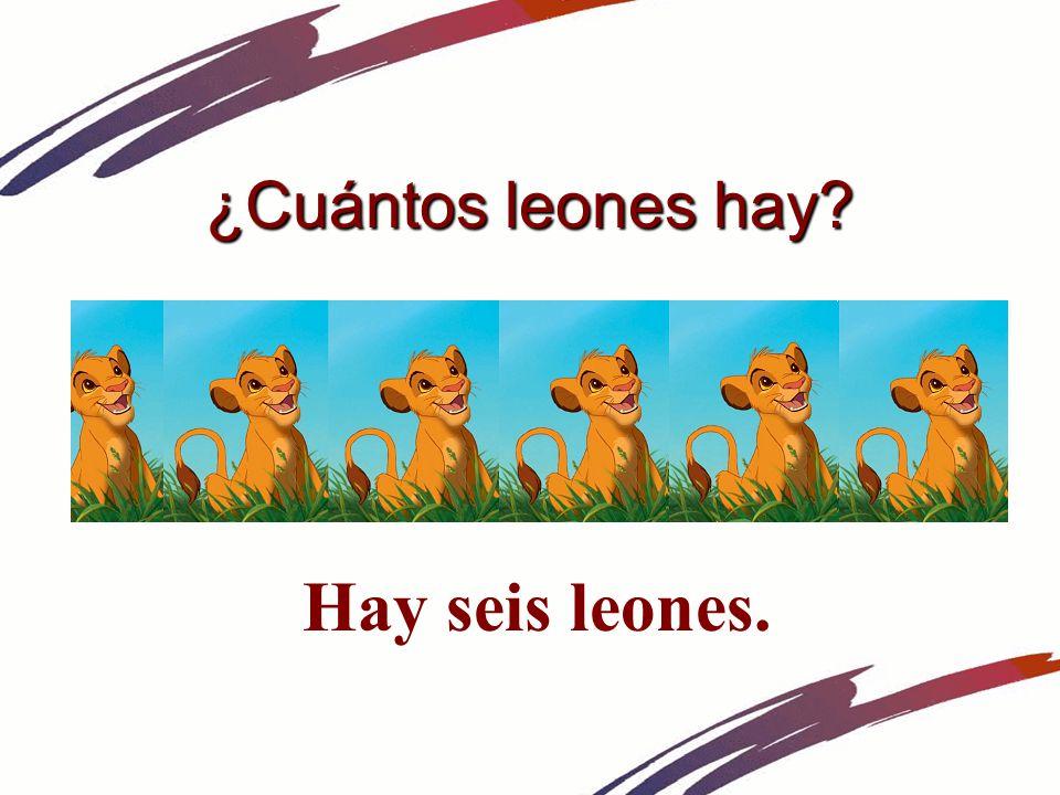 ¿Cuántos leones hay Hay seis leones.