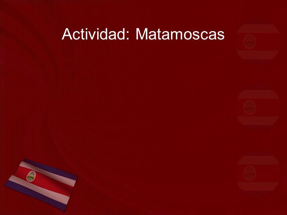 Actividad: Matamoscas