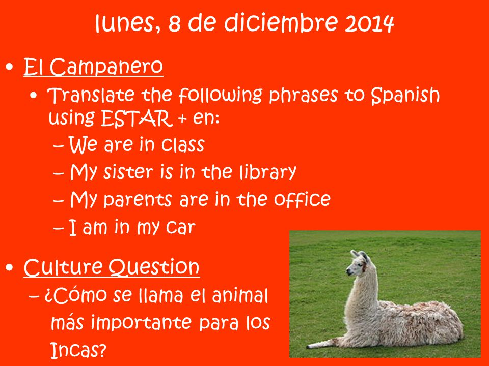 El Campanero Translate the following phrases to Spanish using ESTAR + en: –We are in class –My sister is in the library –My parents are in the office –I am in my car Culture Question –¿Cómo se llama el animal más importante para los Incas.