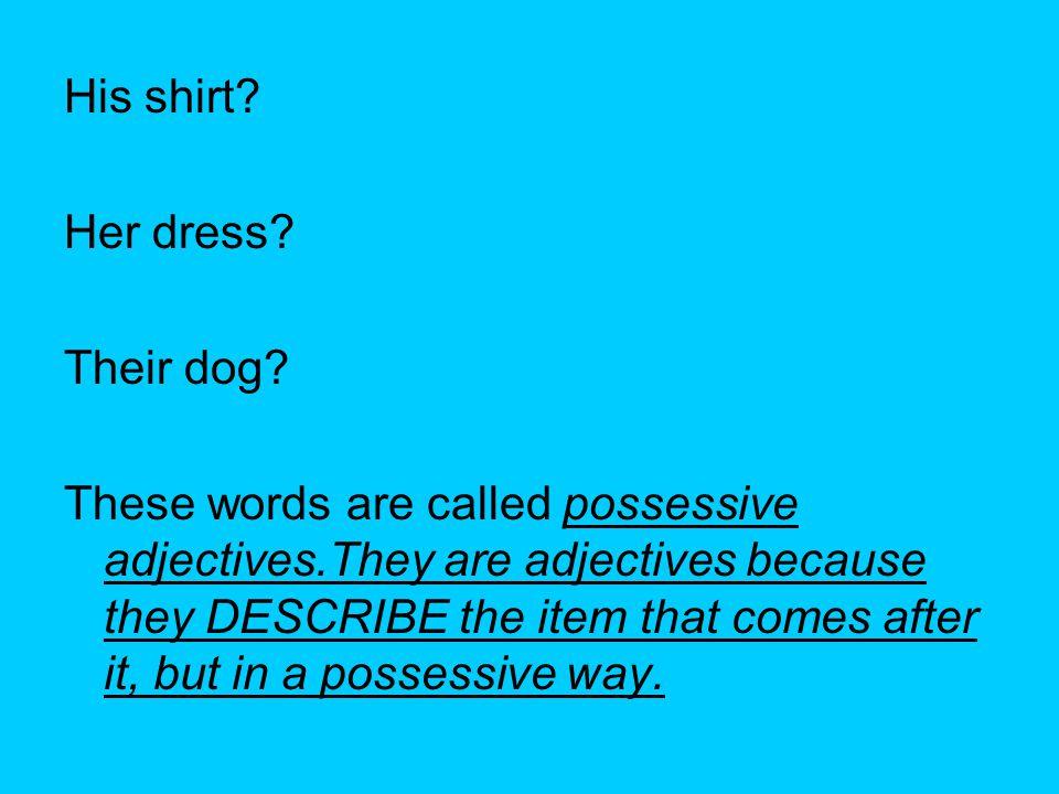 His shirt. Her dress. Their dog.