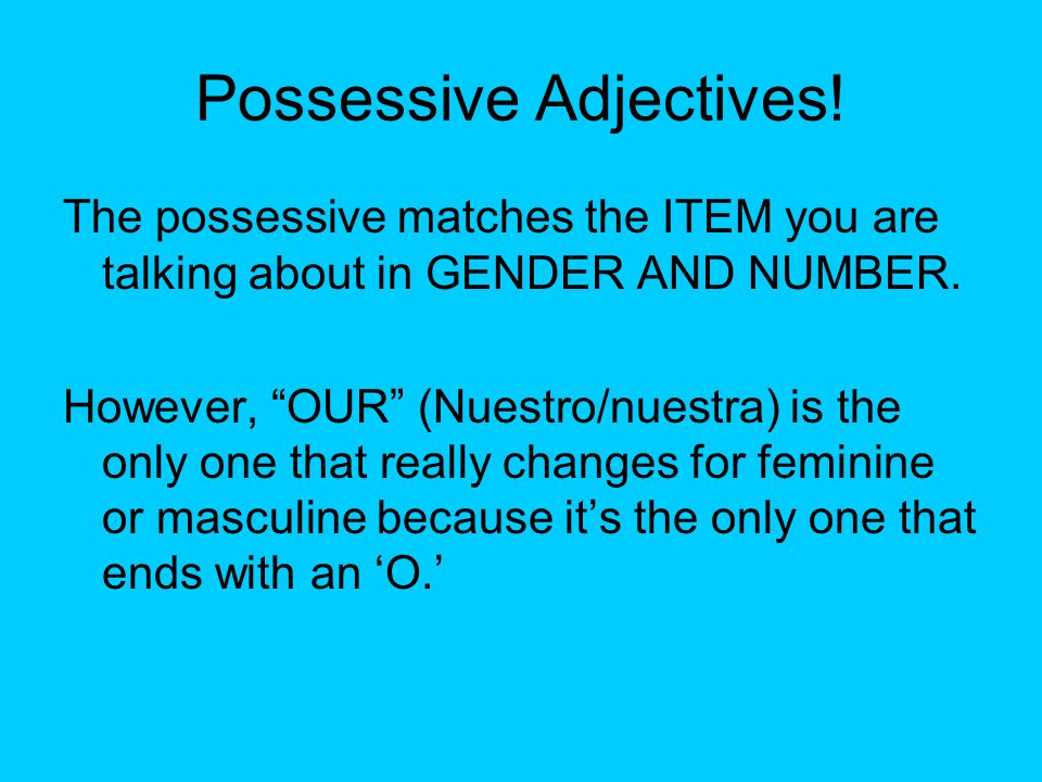 Possessive Adjectives. The possessive matches the ITEM you are talking about in GENDER AND NUMBER.