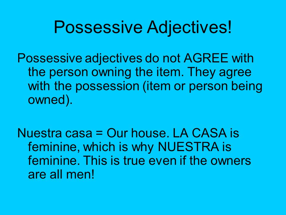 Possessive Adjectives. Possessive adjectives do not AGREE with the person owning the item.