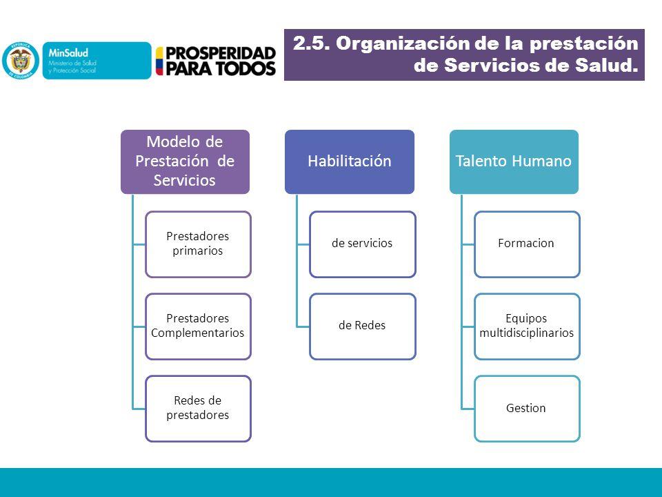2.5. Organización de la prestación de Servicios de Salud.