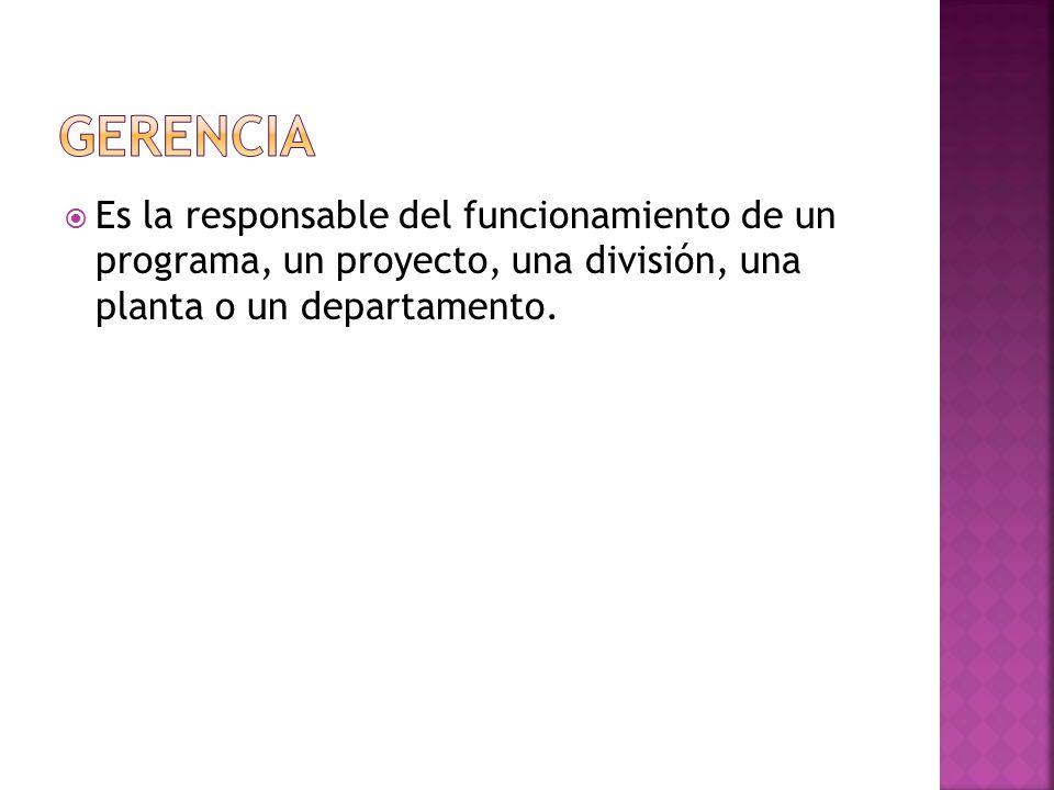  Es la responsable del funcionamiento de un programa, un proyecto, una división, una planta o un departamento.