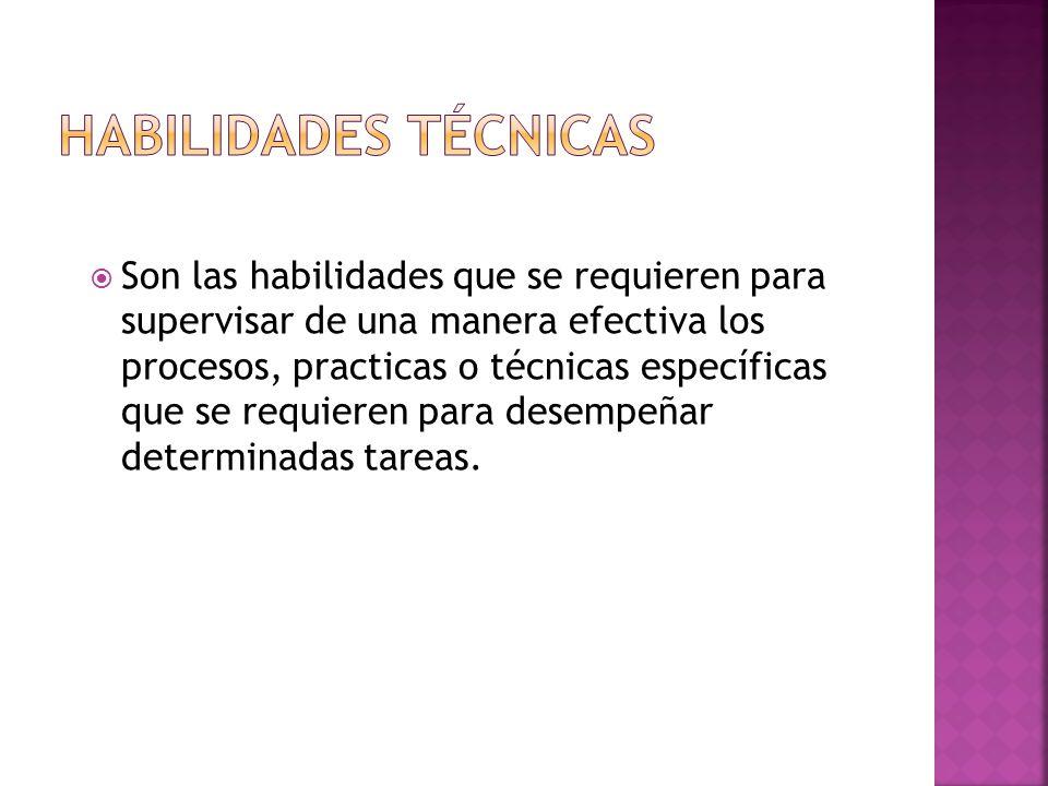  Son las habilidades que se requieren para supervisar de una manera efectiva los procesos, practicas o técnicas específicas que se requieren para desempeñar determinadas tareas.