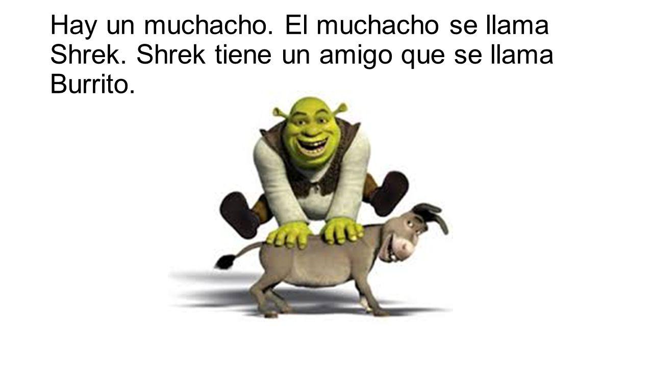 Hay un muchacho. El muchacho se llama Shrek. Shrek tiene un amigo que se llama Burrito.