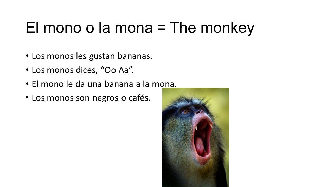 El mono o la mona = The monkey Los monos les gustan bananas.