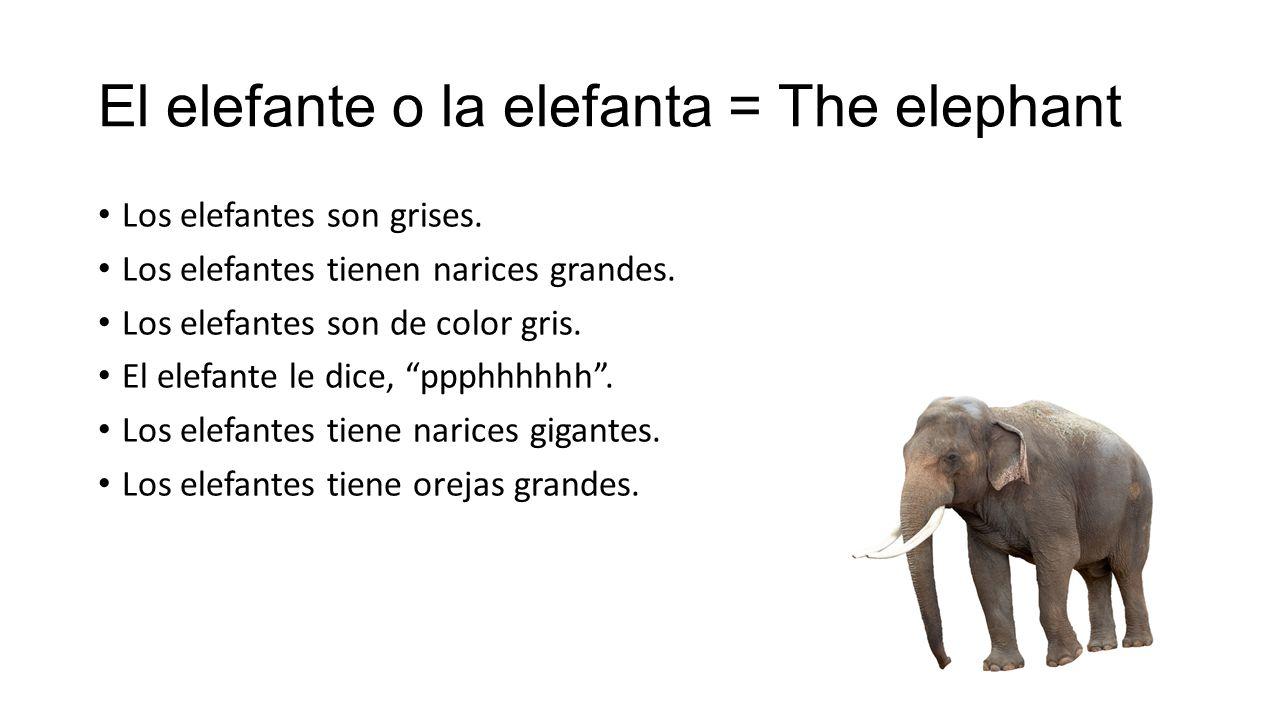 El elefante o la elefanta = The elephant Los elefantes son grises.