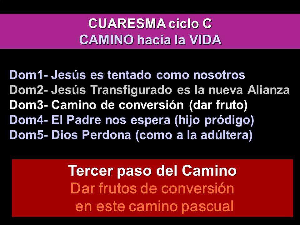 CAMINO EL REINO ESTÁ ENTRE VOSOTROS HIJO, TODO LO MÍO ES TUYO Que mi corazón se inflame del Stabat Mater de Pergolessi, nos mueva a la conversión evangelio de Lucas