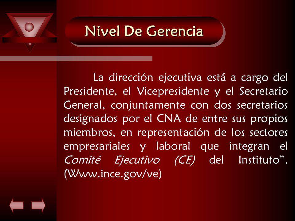 Nivel De Gerencia La dirección ejecutiva está a cargo del Presidente, el Vicepresidente y el Secretario General, conjuntamente con dos secretarios designados por el CNA de entre sus propios miembros, en representación de los sectores empresariales y laboral que integran el Comité Ejecutivo (CE) del Instituto .