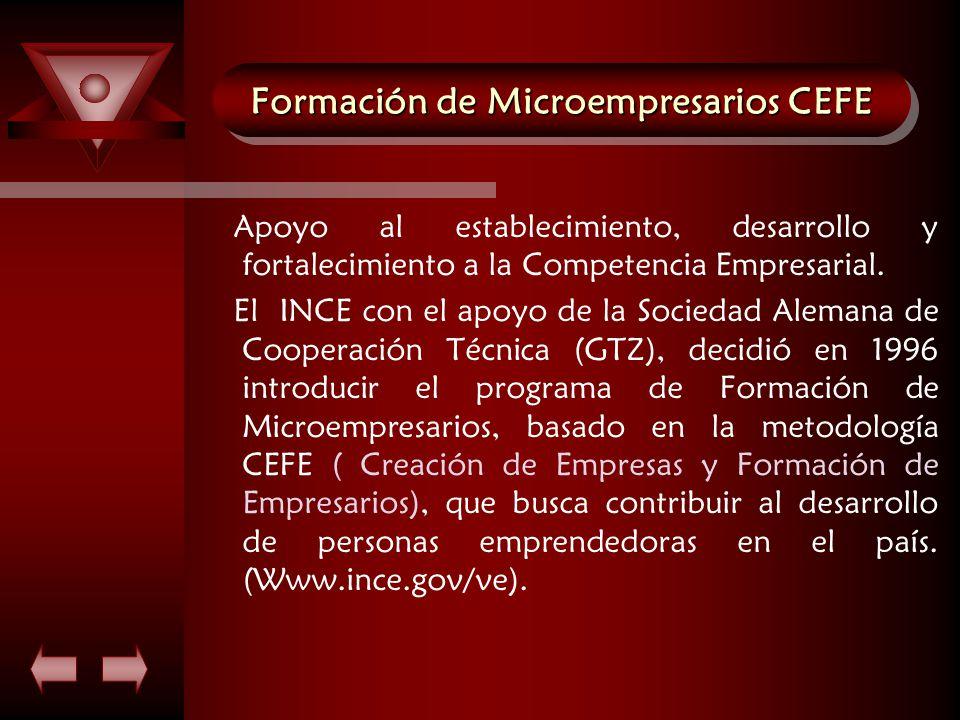 Formación de Microempresarios CEFE Apoyo al establecimiento, desarrollo y fortalecimiento a la Competencia Empresarial.