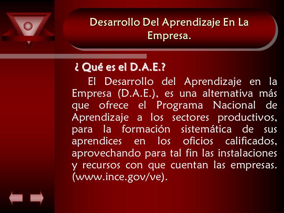 Desarrollo Del Aprendizaje En La Empresa. ¿ Qué es el D.A.E..