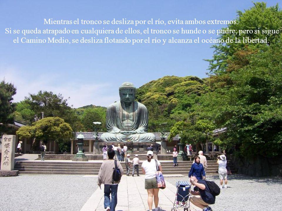 Buda comparó el Camino Medio a un tronco que se desliza flotando por un río.