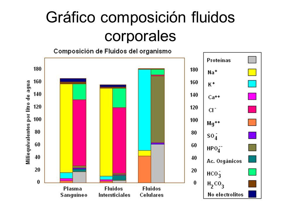 Secreción En la secreción se eliminan sustancias que pasaron el filtro como ciertas drogas, amoniaco, potasio, etc