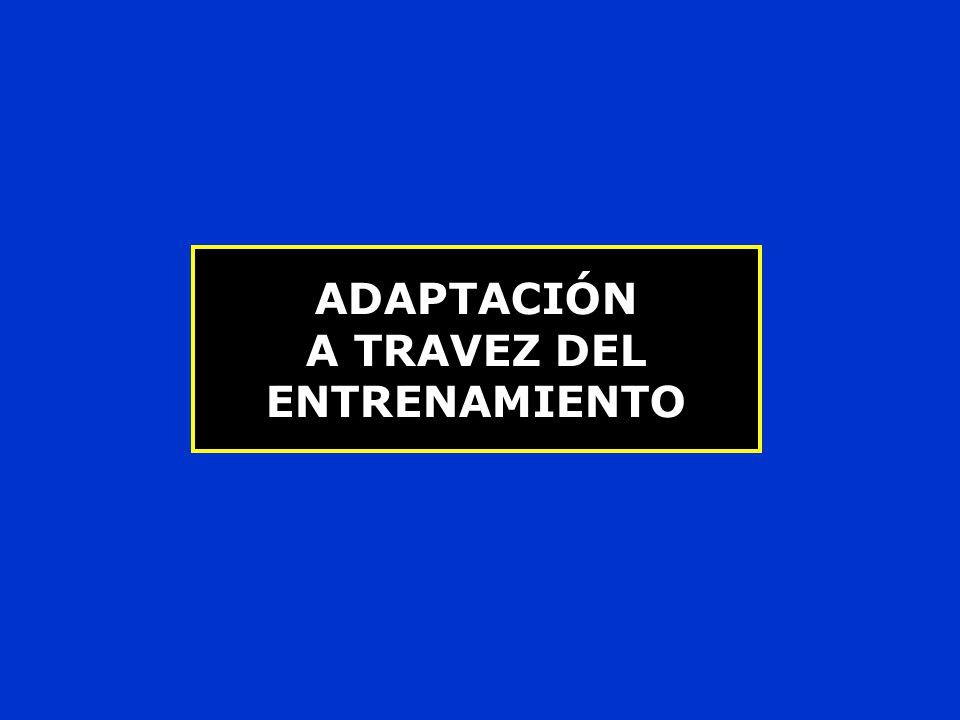 ADAPTACIÓN A TRAVEZ DEL ENTRENAMIENTO