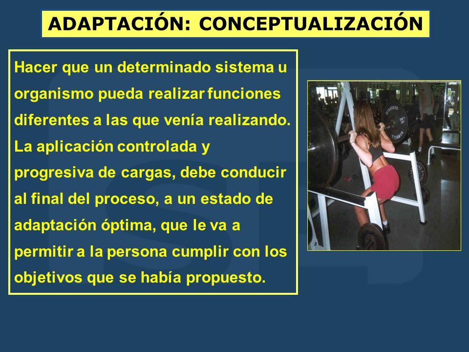 ADAPTACIÓN: CONCEPTUALIZACIÓN Hacer que un determinado sistema u organismo pueda realizar funciones diferentes a las que venía realizando.