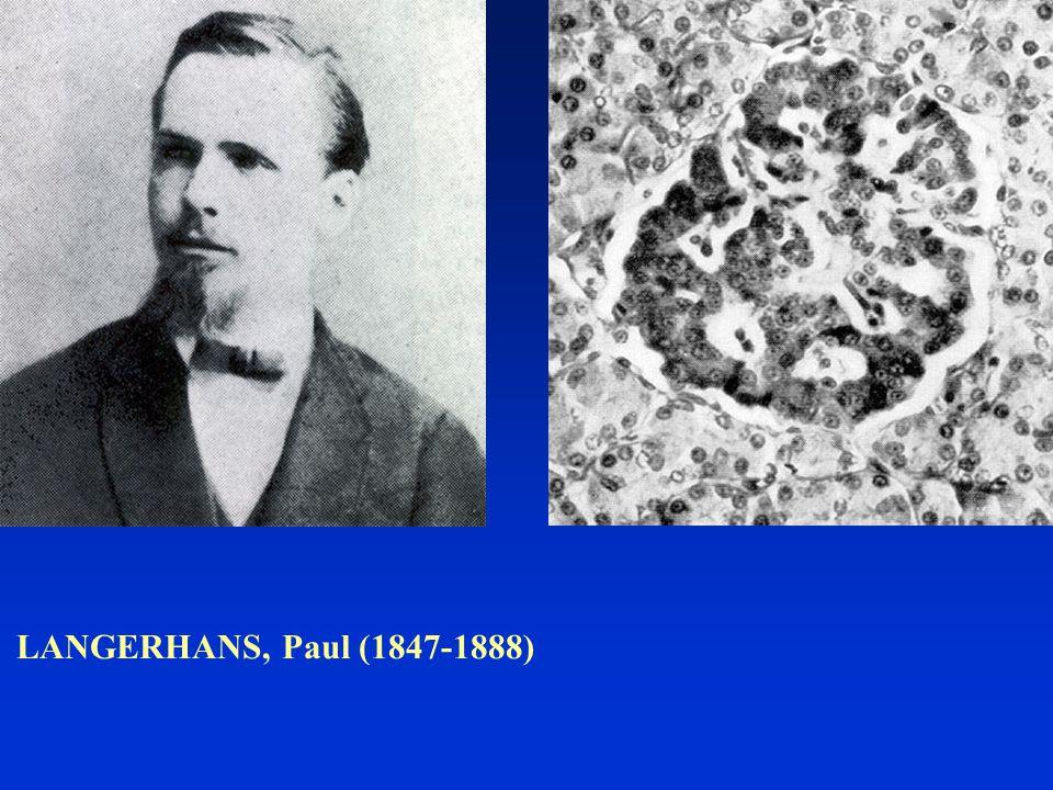 LANGERHANS, Paul (1847-1888)