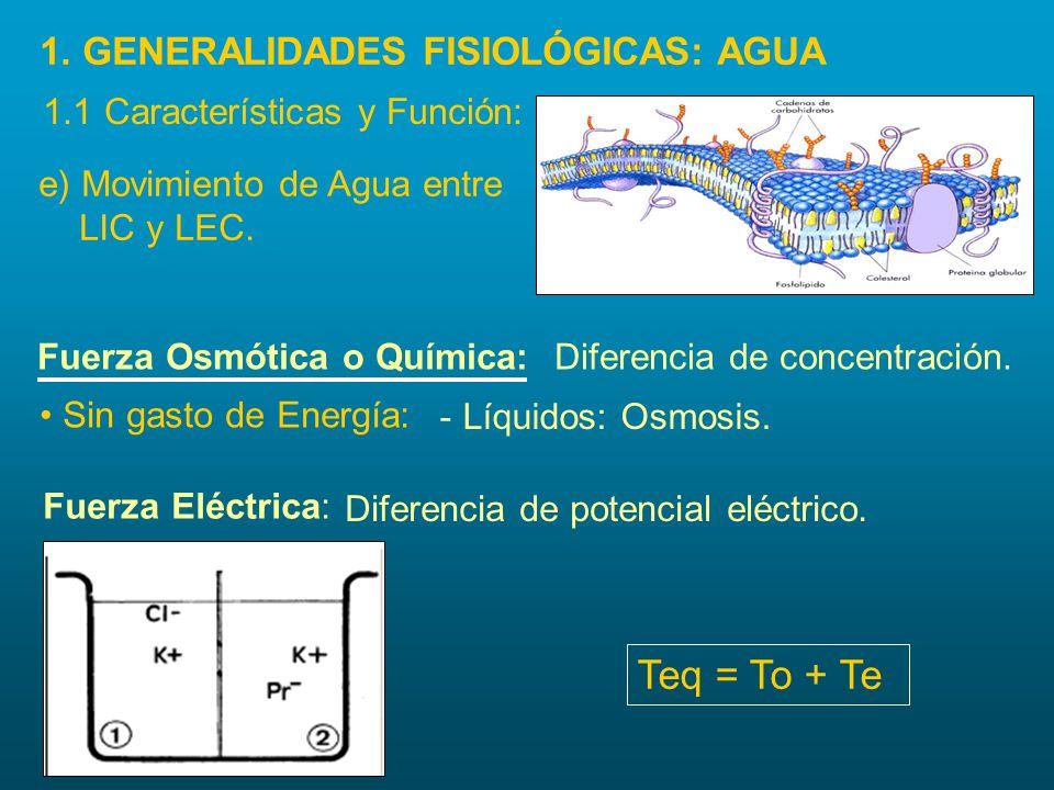 e) Movimiento de Agua entre LIC y LEC. Fuerza Osmótica o Química:Diferencia de concentración. Sin gasto de Energía: - Líquidos: Osmosis. 1. GENERALIDA