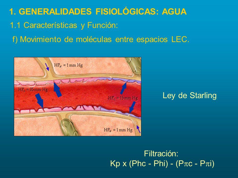 f) Movimiento de moléculas entre espacios LEC. Filtración: Kp x (Phc - Phi) - (P  c - P  i) Ley de Starling 1. GENERALIDADES FISIOLÓGICAS: AGUA 1.1