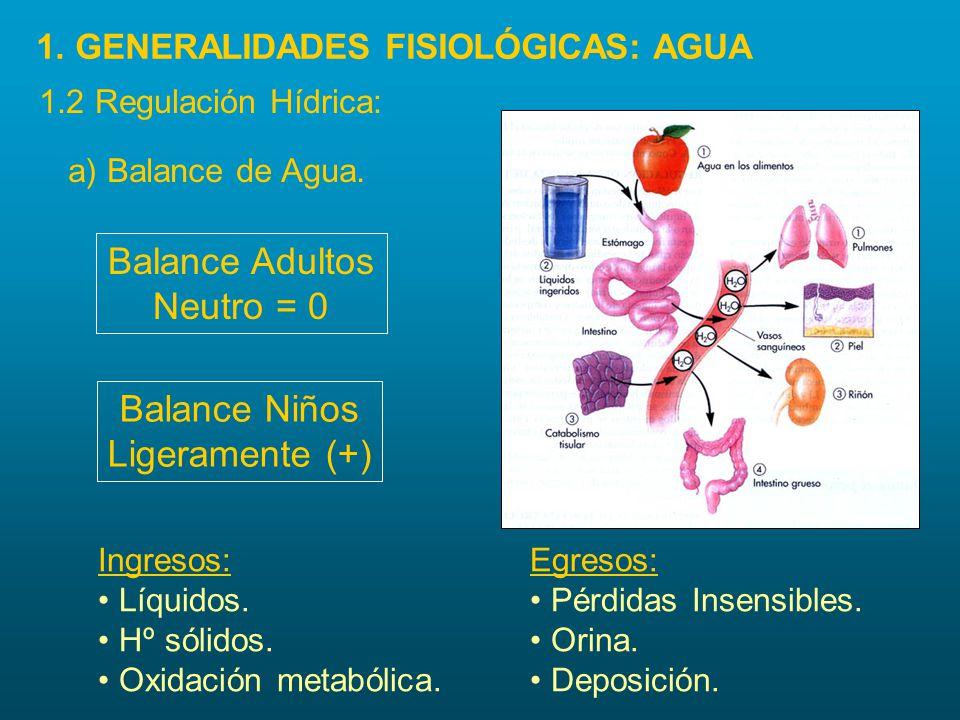a) Balance de Agua. Balance Adultos Neutro = 0 Ingresos: Líquidos. Hº sólidos. Oxidación metabólica. Balance Niños Ligeramente (+) Egresos: Pérdidas I