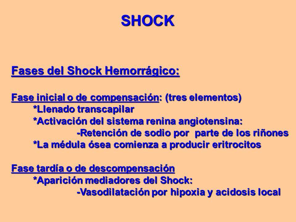 Fases del Shock Hemorrágico: Fase inicial o de compensación: (tres elementos) *Llenado transcapilar *Llenado transcapilar *Activación del sistema renina angiotensina: *Activación del sistema renina angiotensina: -Retención de sodio por parte de los riñones -Retención de sodio por parte de los riñones *La médula ósea comienza a producir eritrocitos *La médula ósea comienza a producir eritrocitos Fase tardía o de descompensación *Aparición mediadores del Shock: *Aparición mediadores del Shock: -Vasodilatación por hipoxia y acidosis local -Vasodilatación por hipoxia y acidosis local SHOCK