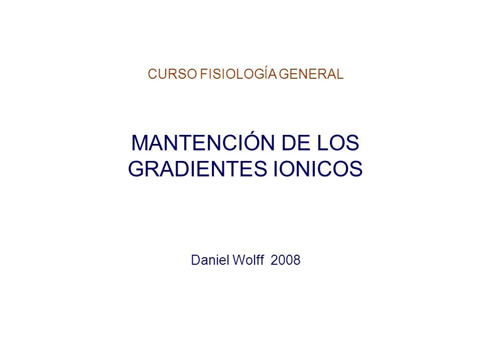 CURSO FISIOLOGÍA GENERAL MANTENCIÓN DE LOS GRADIENTES IONICOS Daniel Wolff 2008