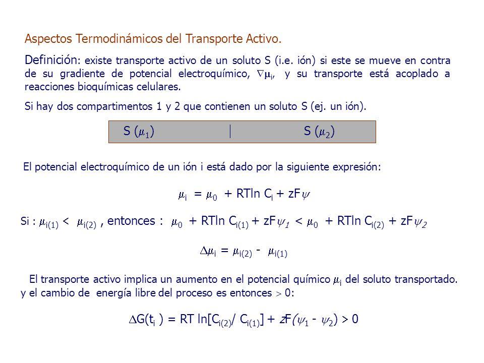 Aspectos Termodinámicos del Transporte Activo.