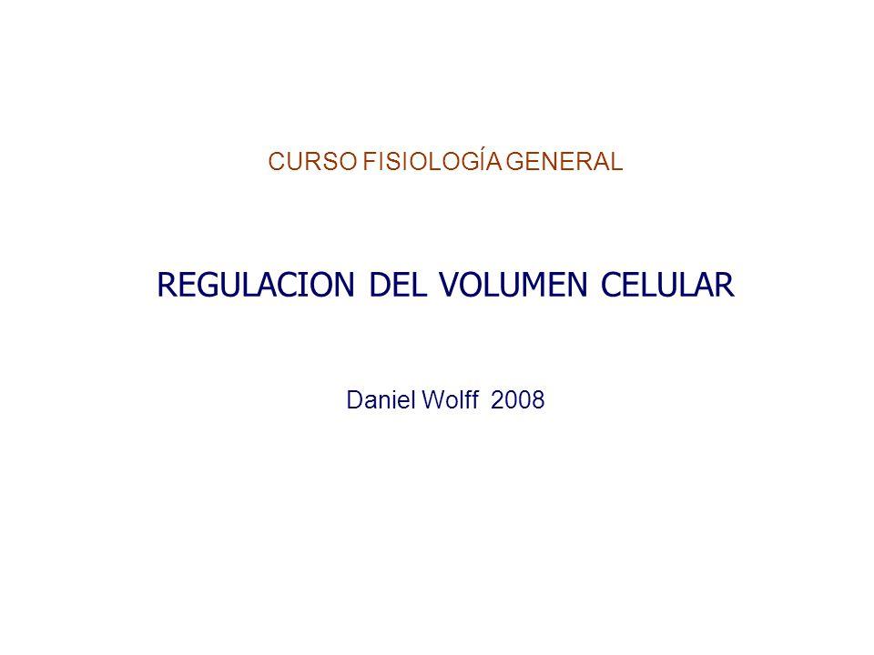 CURSO FISIOLOGÍA GENERAL REGULACION DEL VOLUMEN CELULAR Daniel Wolff 2008