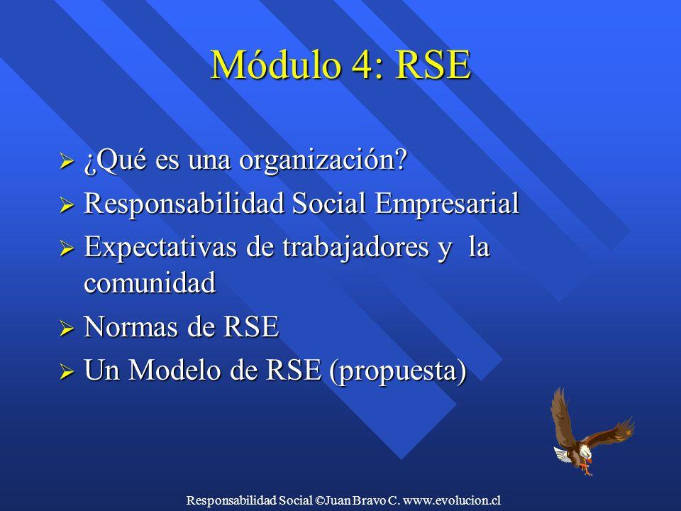 Responsabilidad Social ©Juan Bravo C. www.evolucion.cl Módulo 4: RSE  ¿Qué es una organización.
