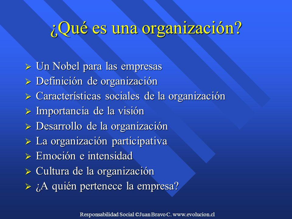 Responsabilidad Social ©Juan Bravo C. www.evolucion.cl ¿Qué es una organización.