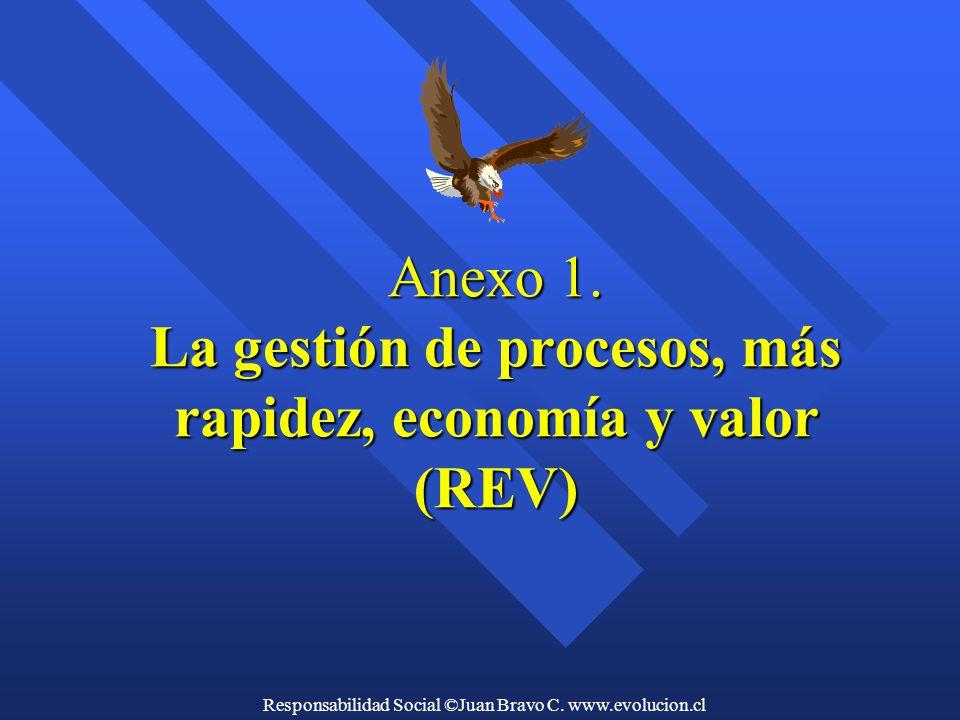 Anexo 1. La gestión de procesos, más rapidez, economía y valor (REV)