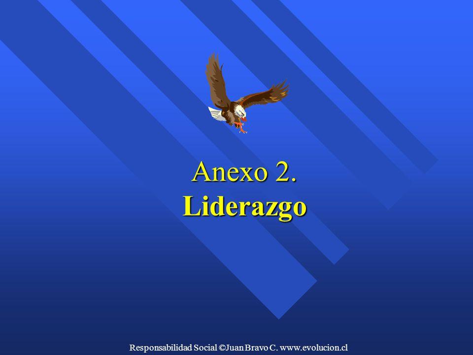 Anexo 2. Liderazgo