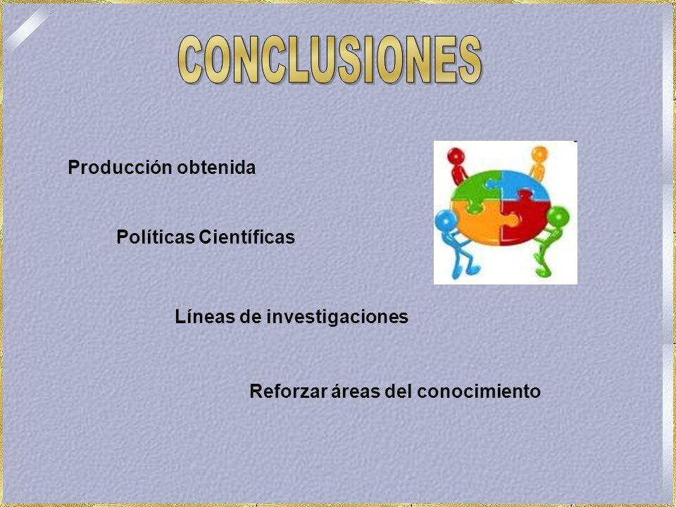 Producción obtenida Políticas Científicas Líneas de investigaciones Reforzar áreas del conocimiento