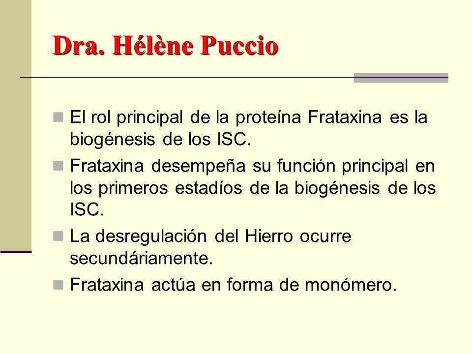 Dra. Hélène Puccio El rol principal de la proteína Frataxina es la biogénesis de los ISC.